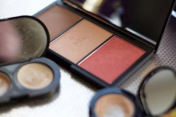 Sleek Blush Palette in Light